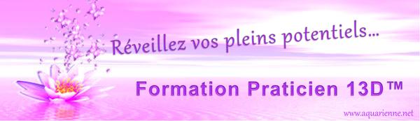 Formation Praticien 13D New Paradigm MDT pour réveiller et développer vos pleins potentiels