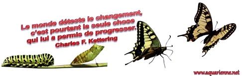 de la chenille au papillon, la peur du changement