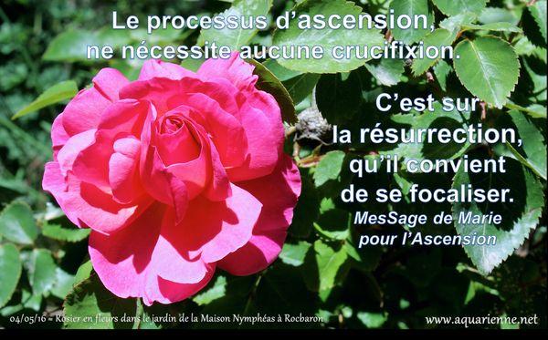 Message de Marie pour l`ascension : le processus d`ascension ne nécessite aucune crucifixion, c`est sur la résurrection qu`il convient de se focaliser.