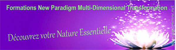 Formation Praticien Basique New Paradigm Multi Dimensional Transformation